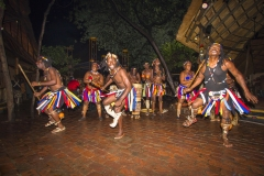 The Boma Dancers 3